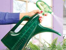Uleiul horticol, pesticid natural si eficient