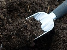 Testeaza pH-ul solului din gradina