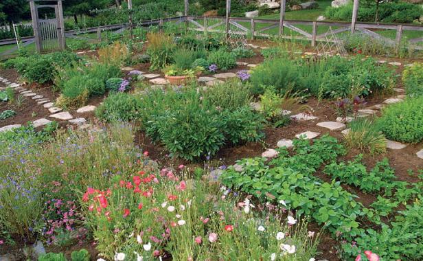 Amenajarea gradinii cum sa dai stil unei gradini de legume for Small kitchen garden design ideas